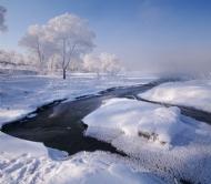 踏雪赏雾凇
